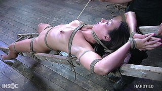 A horny mistress finds herself a new slave and she wants to punish her